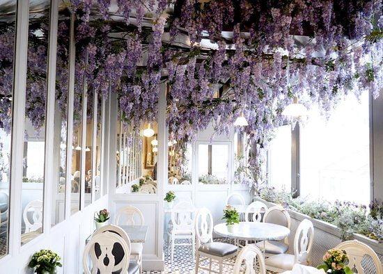 درآمد رستوران wisteria